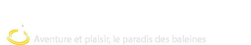 Croisières Escoumins : Aventure et plaisir, le paradis des baleines